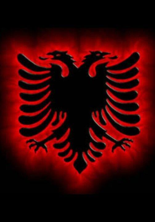 Albania Flag Albania Flag Albanian Eagle Albanian Flag