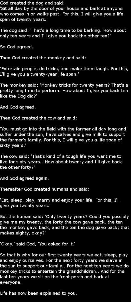 life explained.
