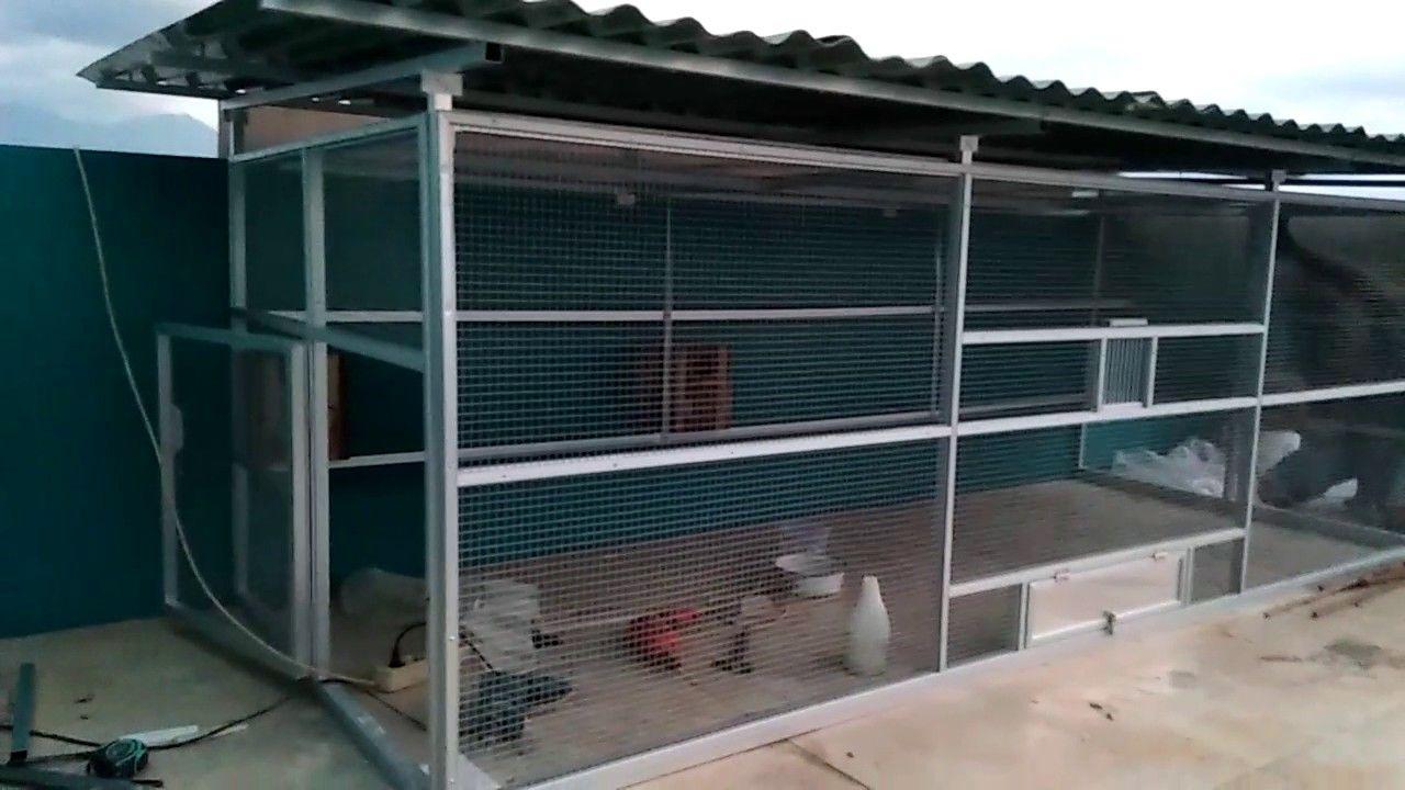 Gambar Cara membuat Kandang Koloni Ternak Lovebird