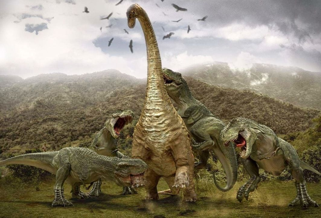 Dinosaur Hd Wallpapers Backgrounds Wallpaper Dinosaur Pictures Dinosaur Wallpaper Dinosaur