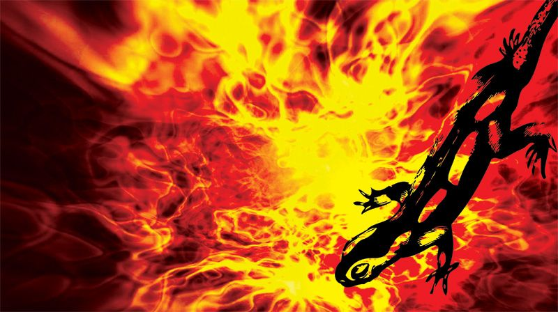 fahrenheit 451 the hearth and salamander Get an answer for 'why is part one of fahrenheit 451 called the hearth and the salamander' and find homework help for other fahrenheit 451 questions at enotes.