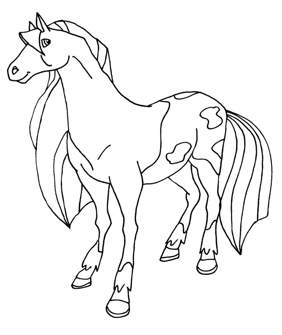 Star Stable Coloring Pages