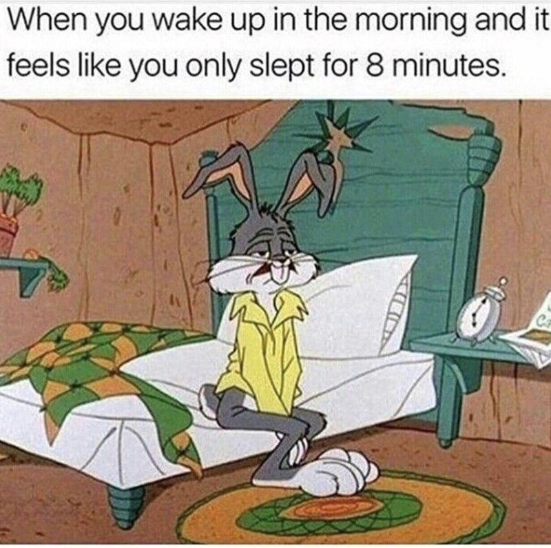 10 Funniest Bugs Bunny Memes (With images) Funny