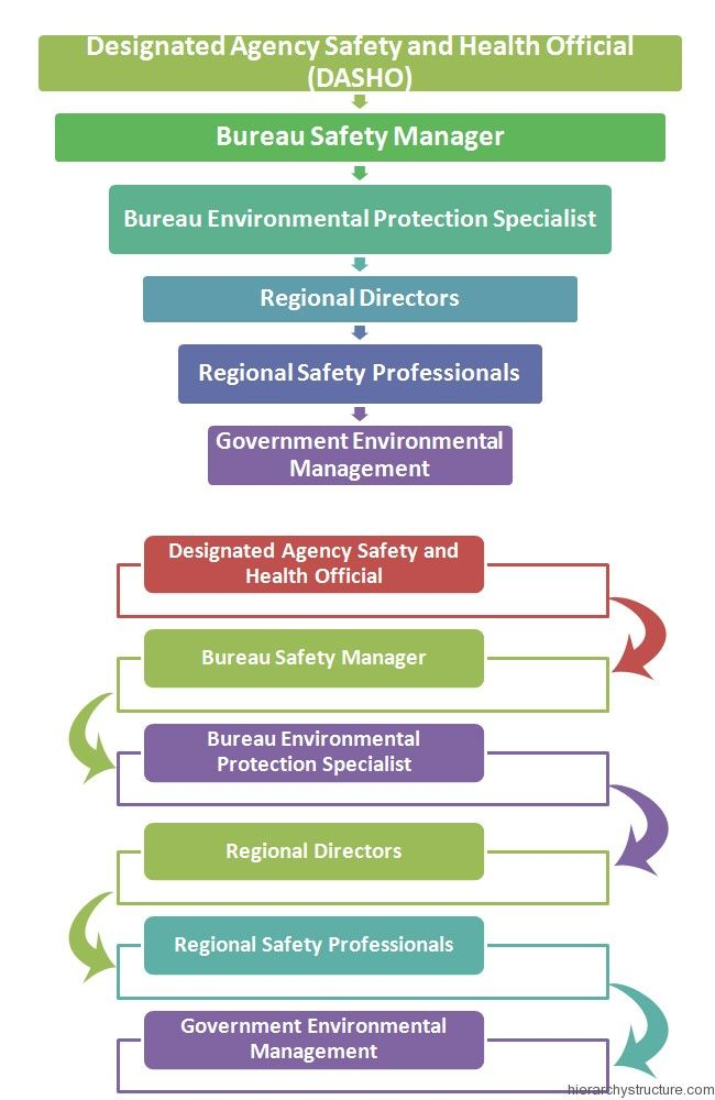 Environmental Management Hierarchy Management Hierarchy - hospital organizational chart