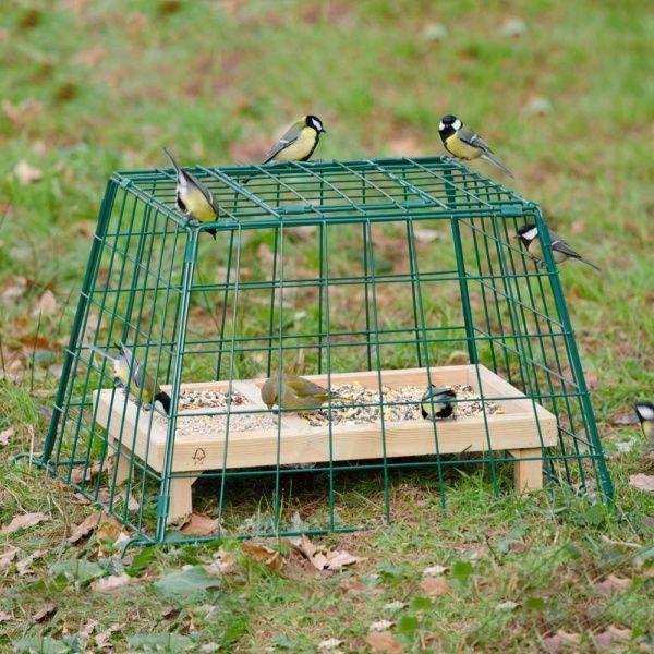 Schutzkäfig Maxi für Bodenfresser, damit Katzen und Raubvögel nicht dran können und dass der Hund nicht das Vogelfutter frisst. #smallbirds