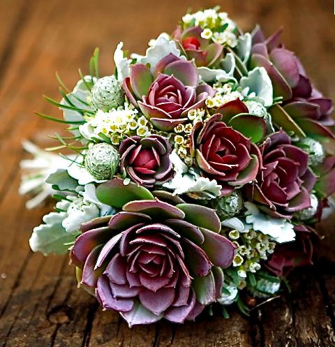 Succulent Floras (With images) Bridal bouquet green
