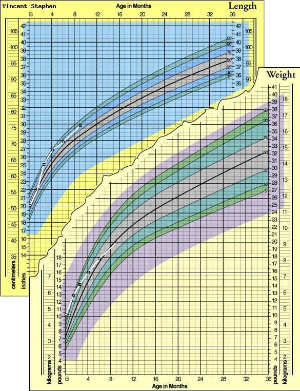 Baby Growth Chart - Graph Your Baby\u0027s Height and Weight with a