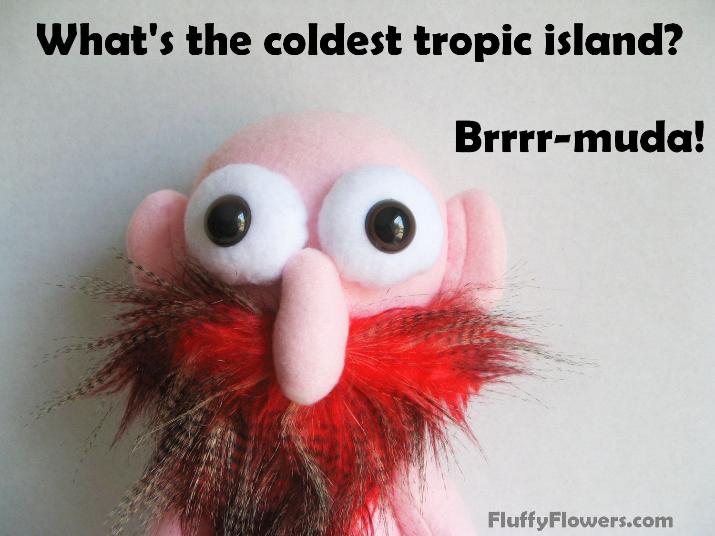 cute & clean island joke for children featuring an adorable bald