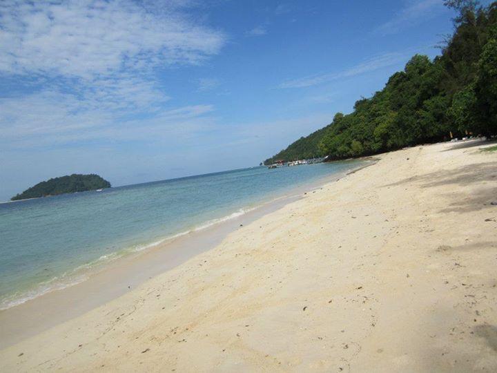 Borneo again!