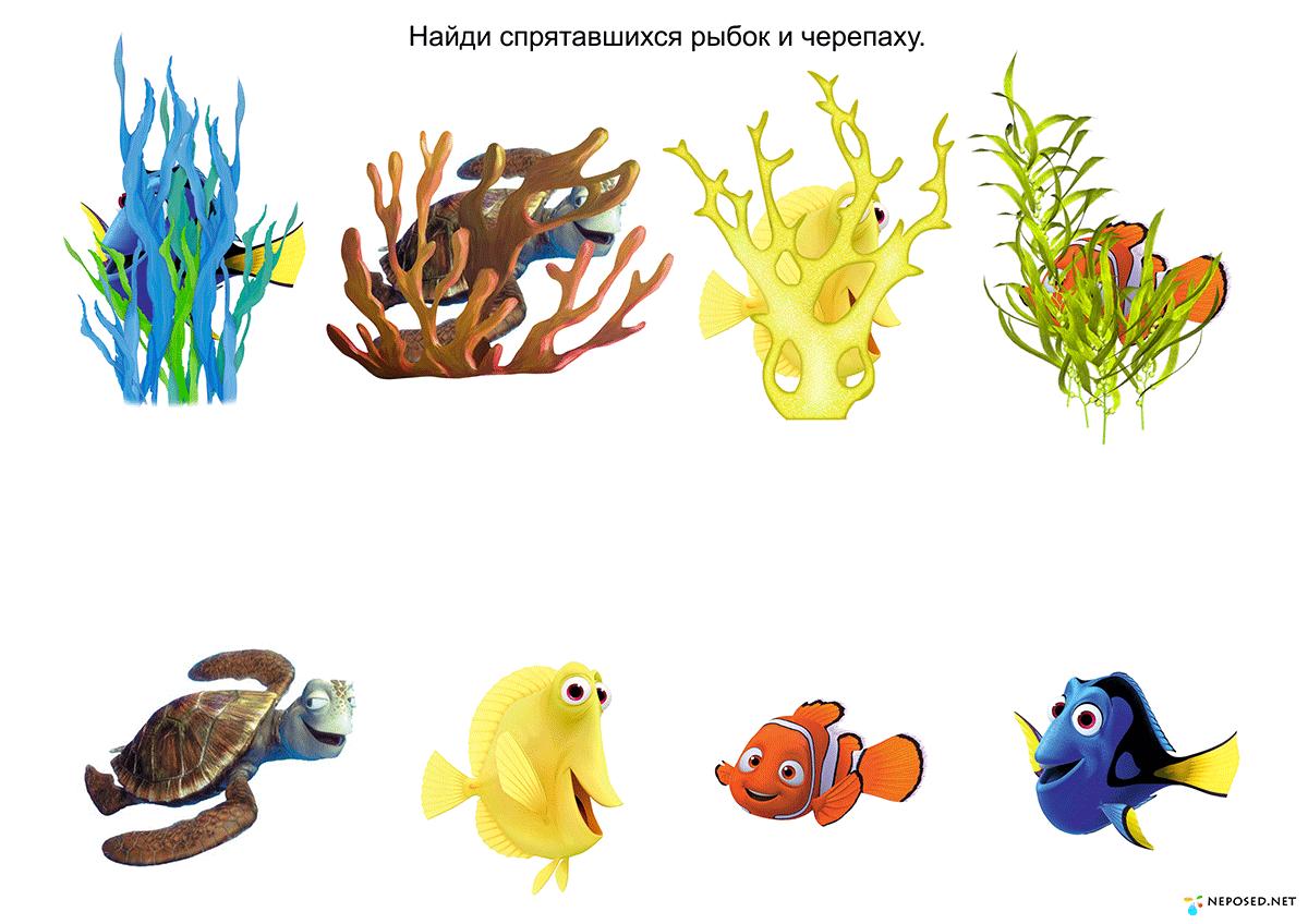 ему дидактические картинки морские обитатели ученики побеждают