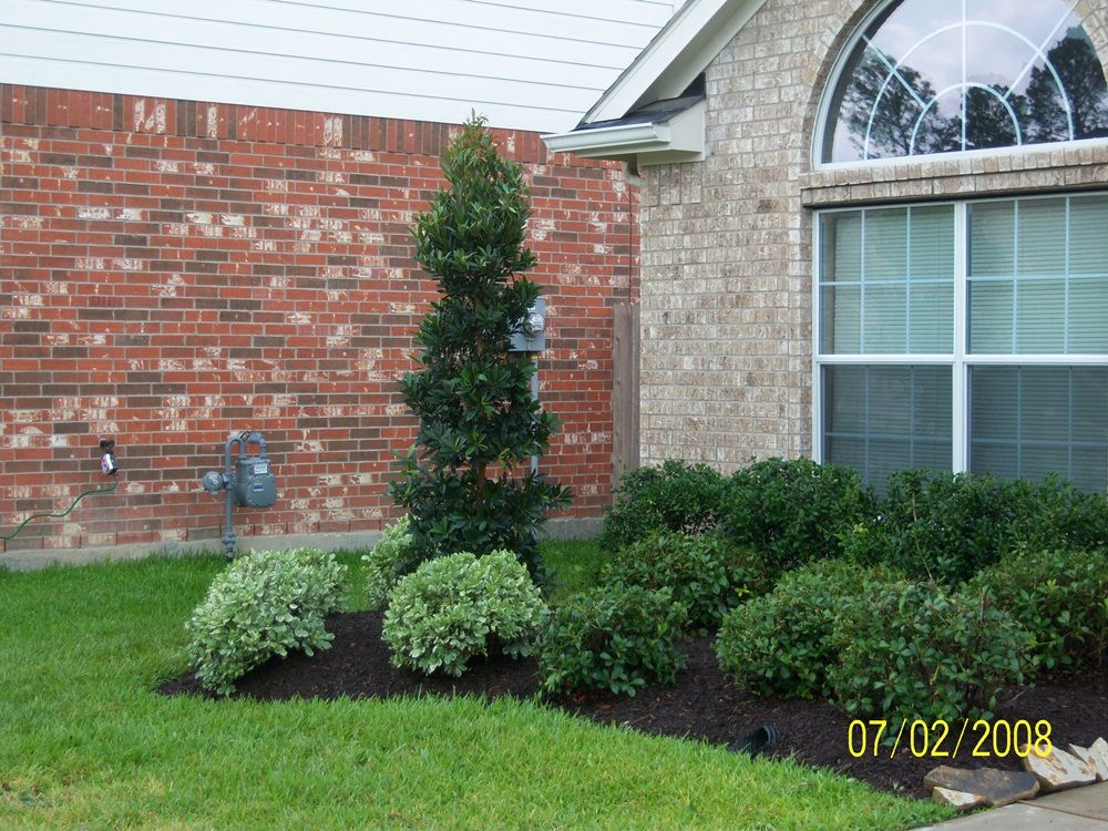 houston lanscaping - Google Search