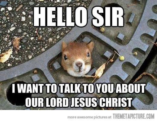 Hi Sir Squirrel Memes Squirrel Funny Christian Memes