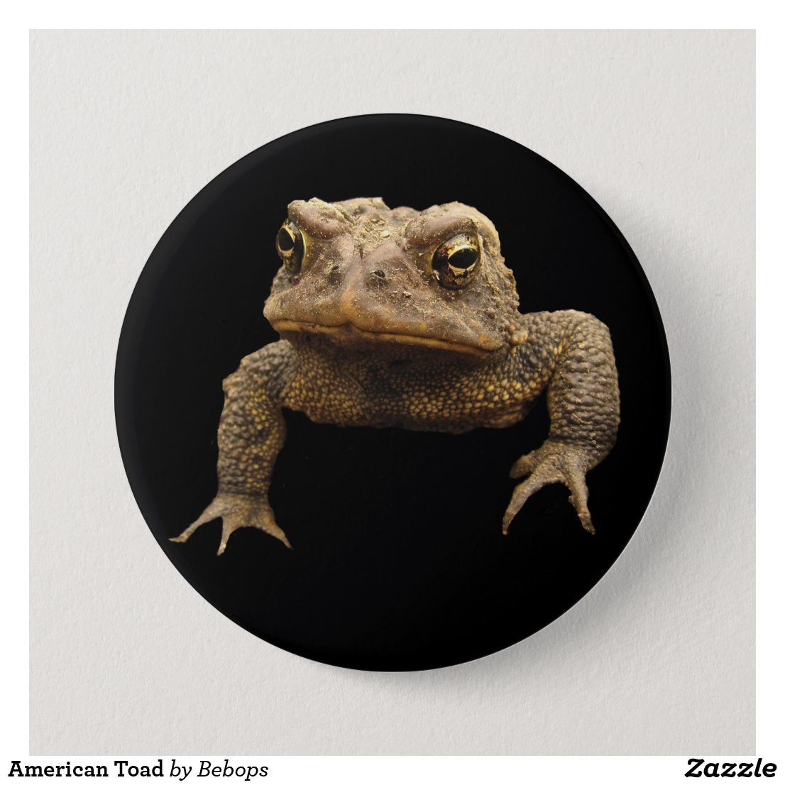 American toad button with images toad round stickers