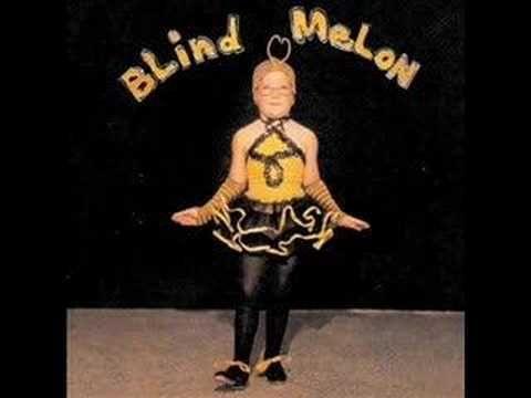 Blind Melon - No Rain (Learned)
