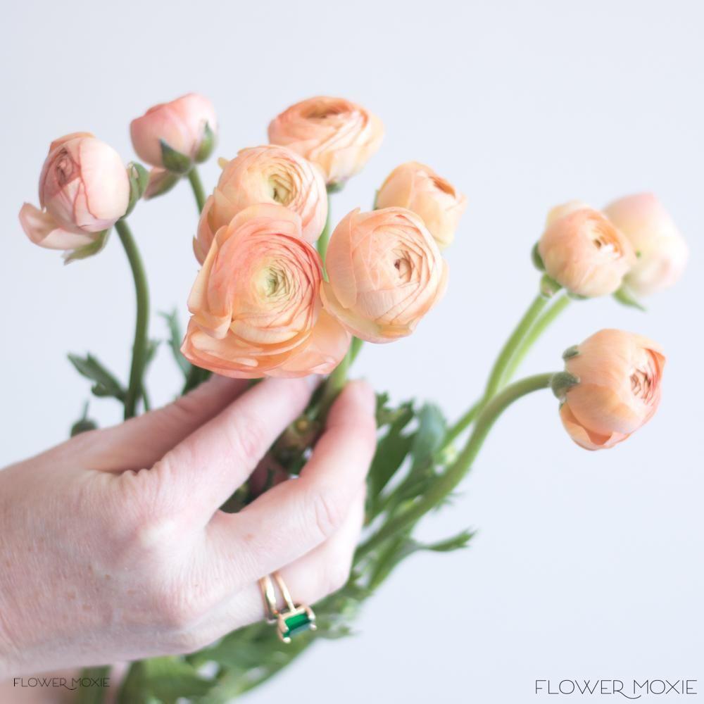 Peach Ranunculus Flowerdefault Title In 2020 Peach Ranunculus Diy Wedding Flowers Flower Packaging
