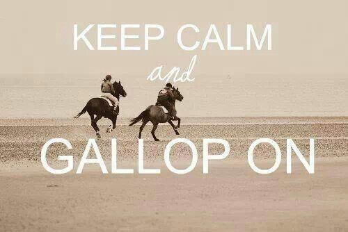 Keep Calm and Gallop On