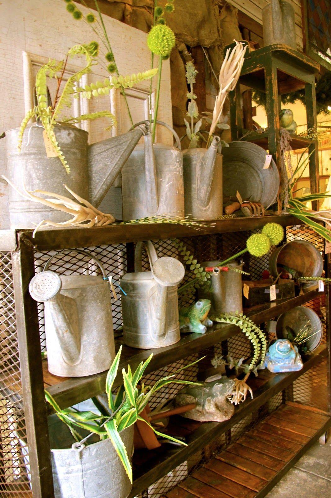 Vintage Watering Can Display Metal Watering Can Garden