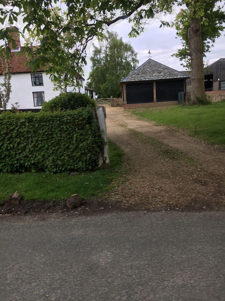 Pin by Julie Docherty on Garage Tree, Plants, Tree trunk
