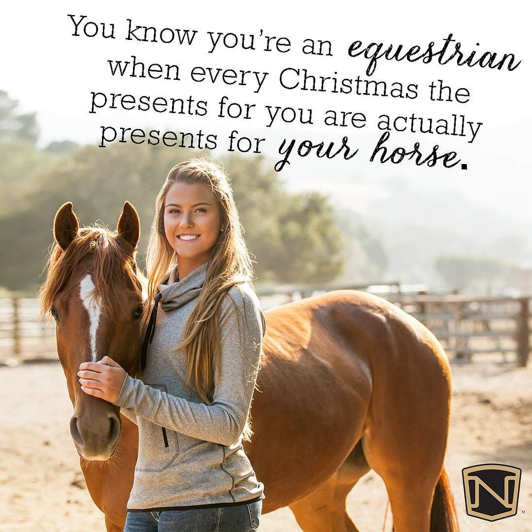 Double Tap If You Agree Nobleoutfitters Horses Pony Quotes Horse Quotes