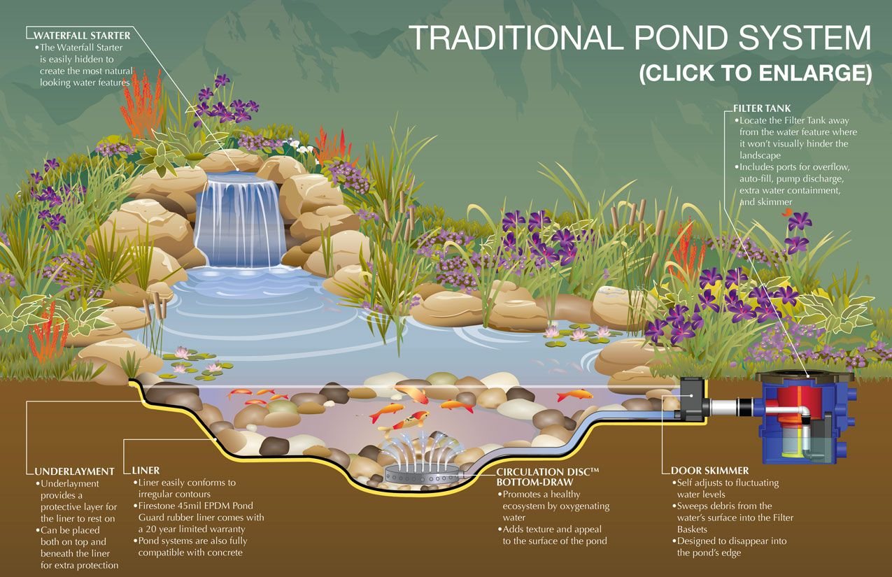 Small Fish Pond Design Ideas Traditional Pond System Schematic Design  Ideas. Exterior, Garden