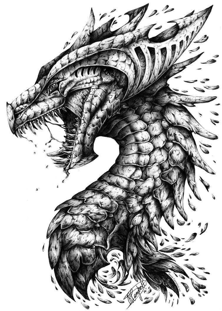 Lamest title this side of the Southern Hemisphere but I just couldn't settle for 'Dragon Portrait v.2' And I know dragons aren't deep and meaningful but they are my guilty pleasure and I won't ever...