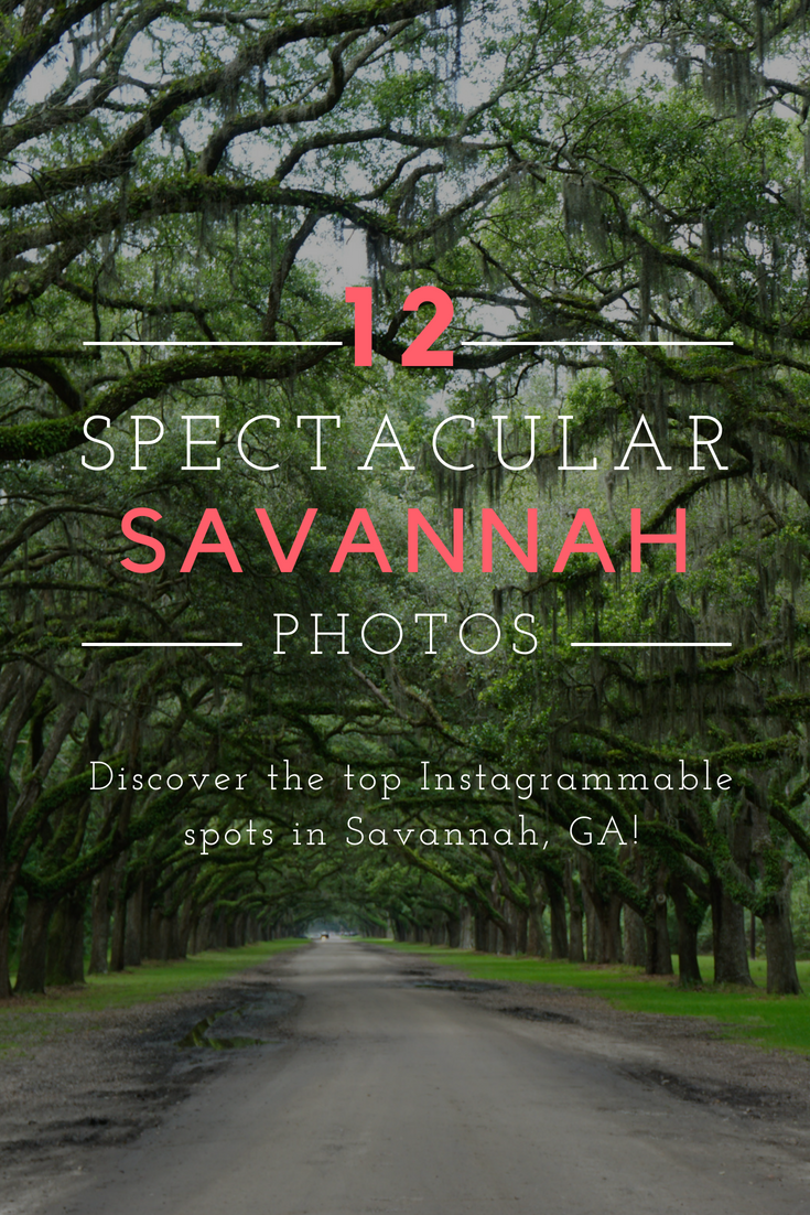 Discover The Top Photo Spots In Savannah Ga Usa Don T Miss These Instagram Places Travel Georgia Forsythpark Wormsloe