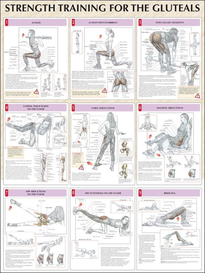 14 lower ab workout routine for men and women glutes for Floor ab workouts