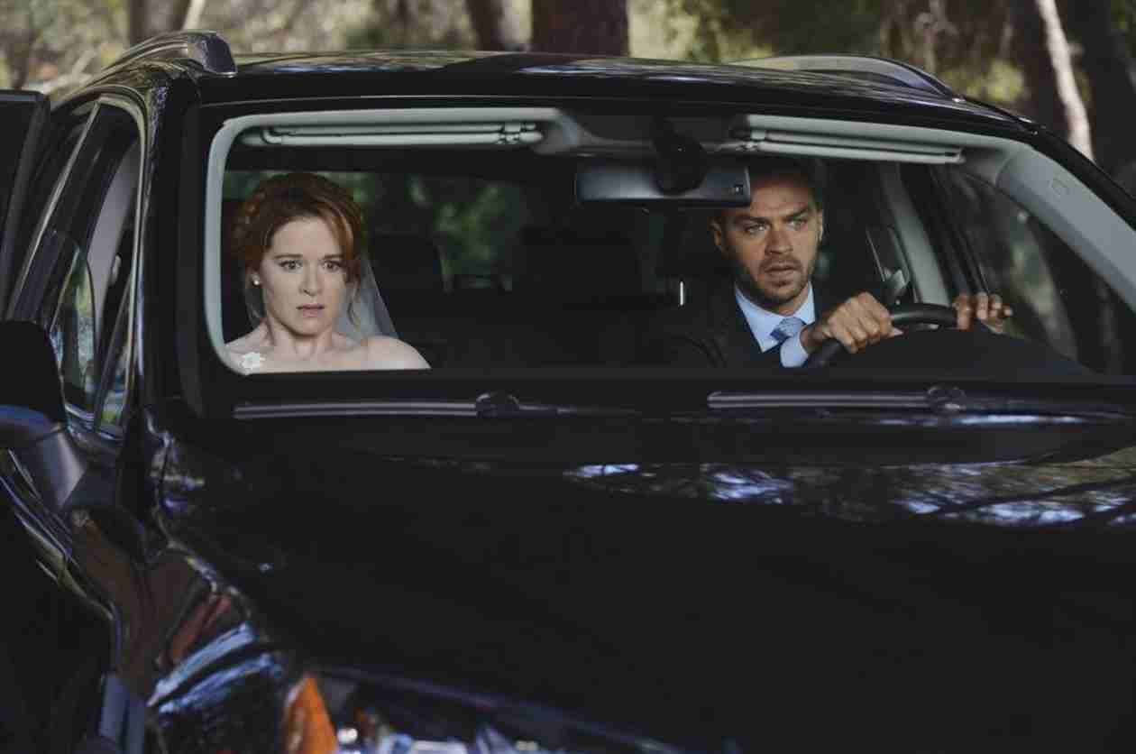 Grey\'s Anatomy: The Jackson and April Wedding Photo Album! (PHOTOS ...