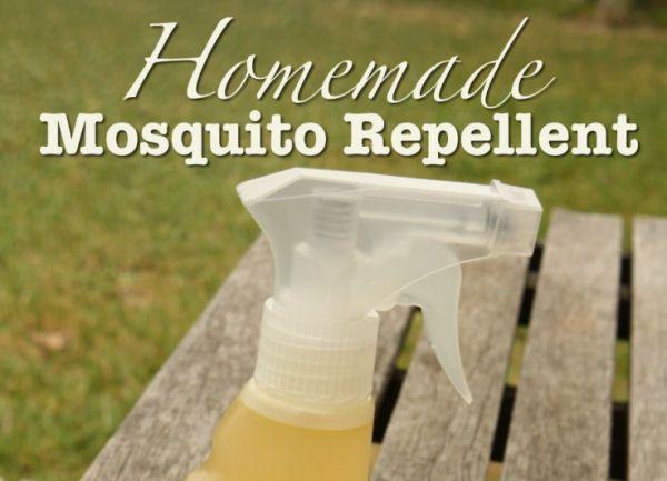 DIY Mosquito Repellent