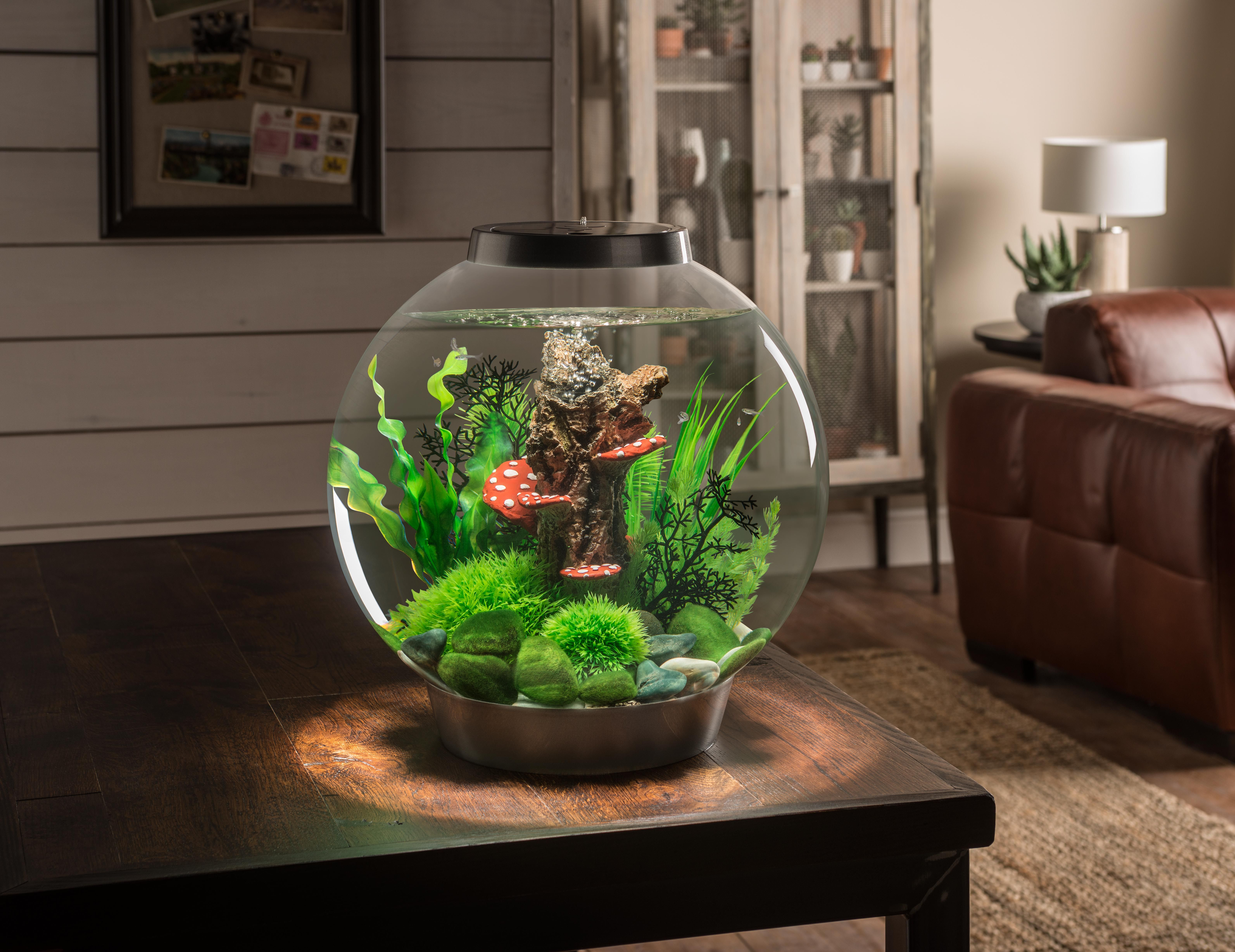 beautiful aquarium biorb classic 30 which is an 8 us. Black Bedroom Furniture Sets. Home Design Ideas