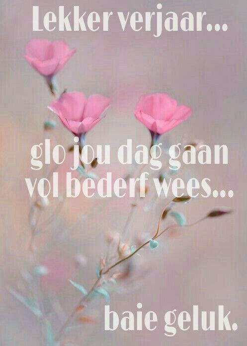 Pin by petro geldenhuys on verjaarsdag pinterest afrikaans and birthday wishes birthday cards happy birthday afrikaans jazz birthdays greeting cards for birthday happy brithday happy b day m4hsunfo Images