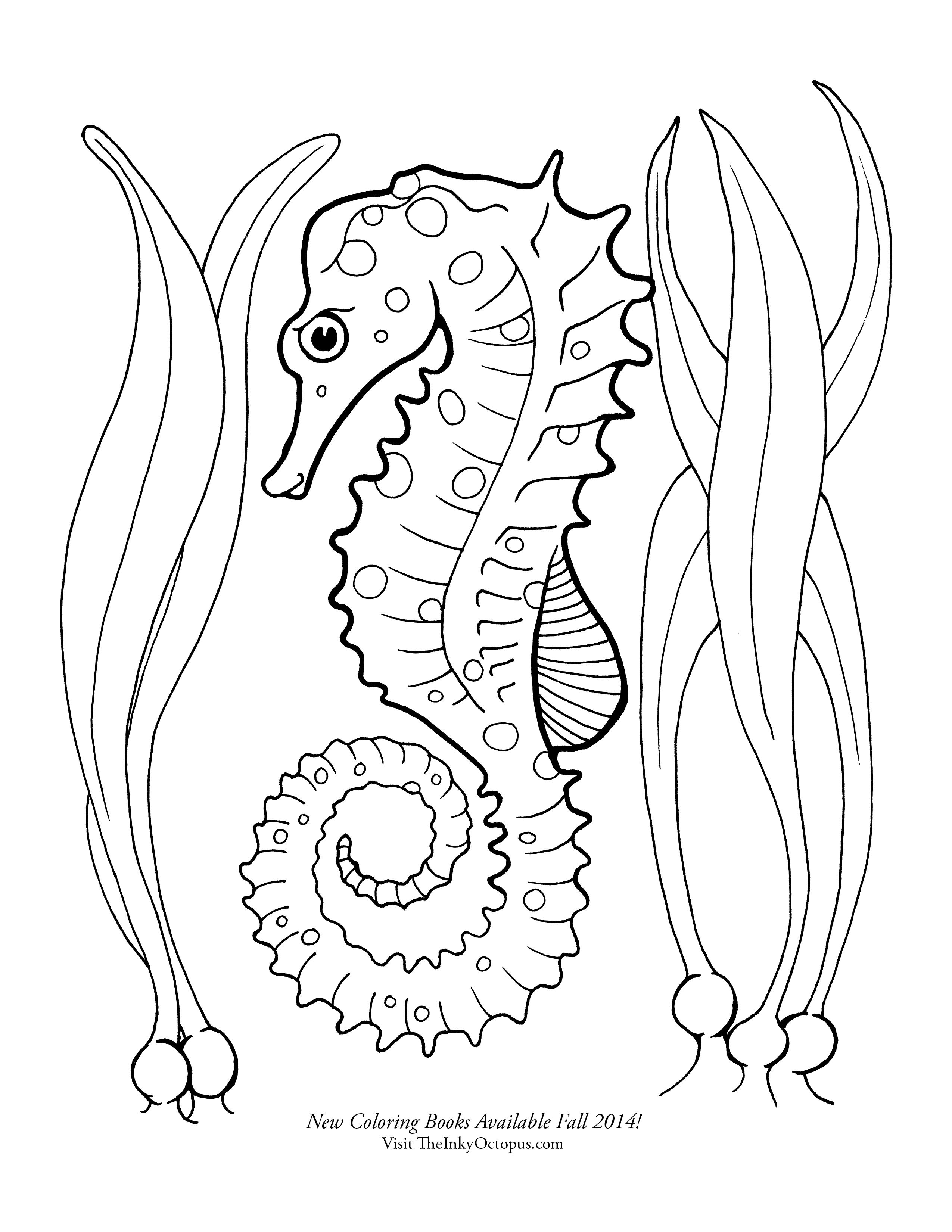 Seahorse Coloring Page Google Search Butterfly Coloring Page Horse Coloring Pages Horse Coloring