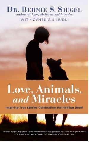 Love, Animals and Miracles