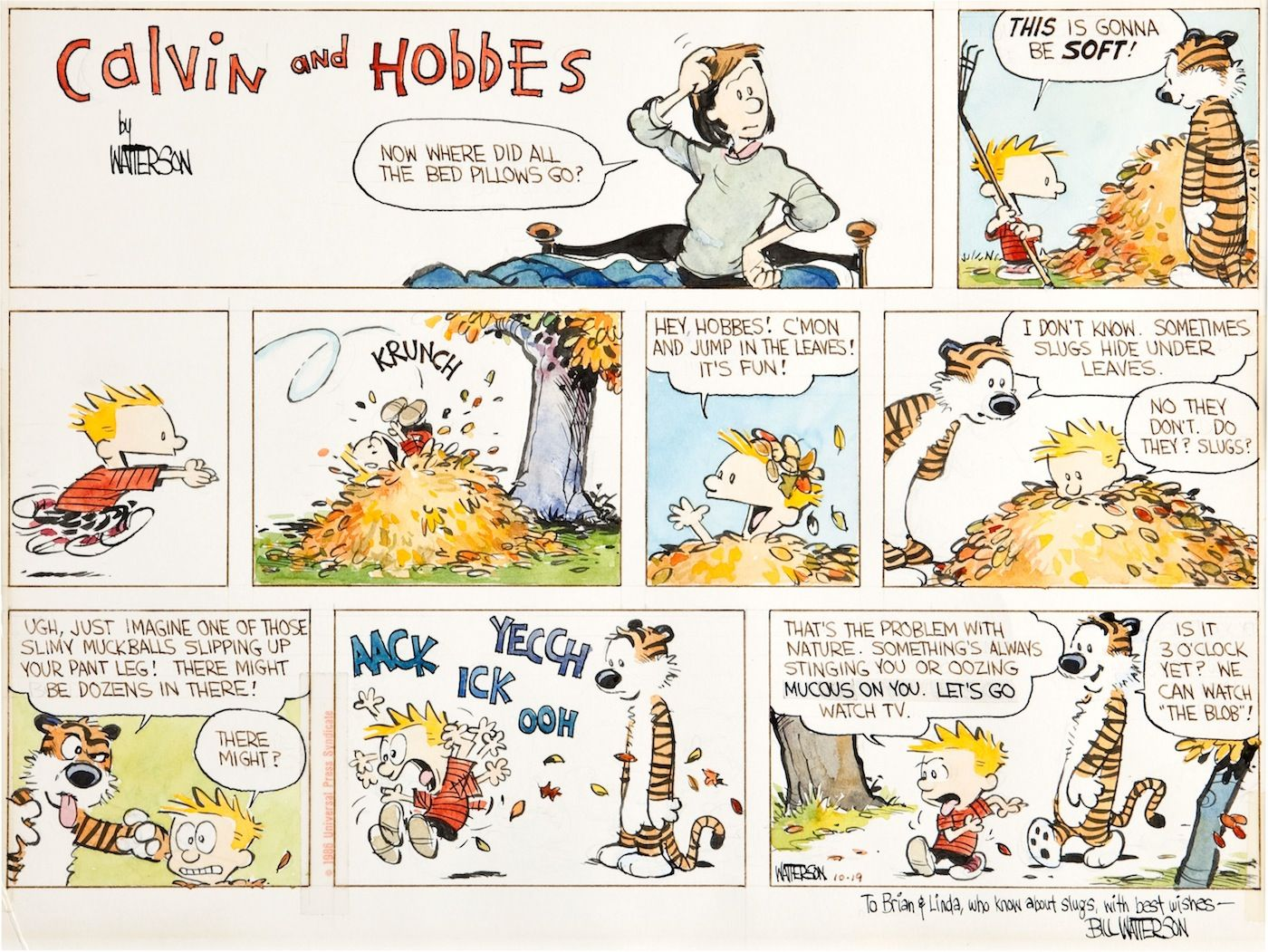 Calvin & Hobbes Revealed - Daily Republican