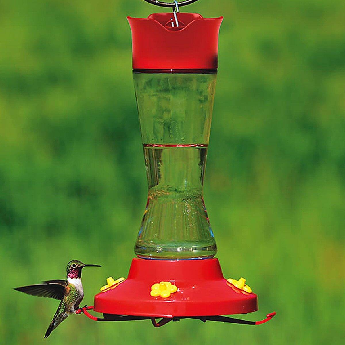 Pinch Waist Glass Hummingbird Feeder 16 oz Humming bird