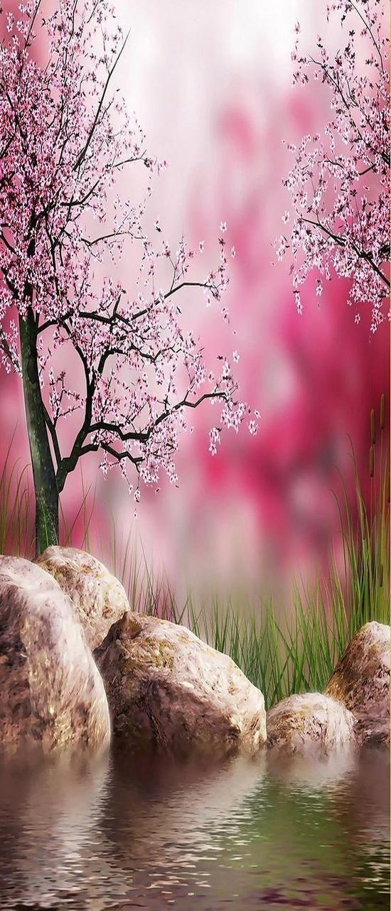 Nature in Spring Flowers Garden Love - via: flowersgardenlove: - Imgend
