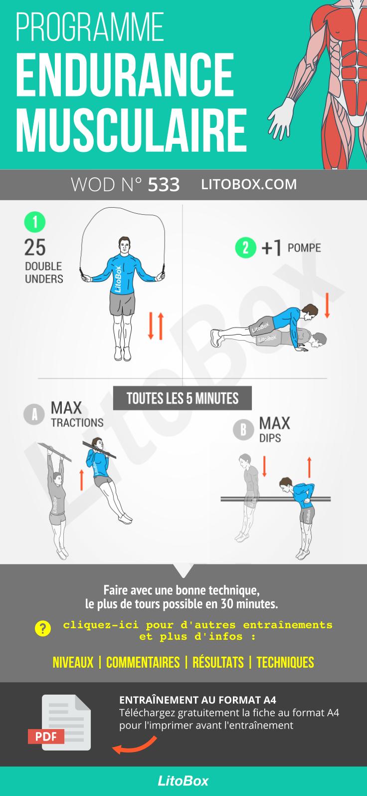 musculation plan de régime musculaire et la force