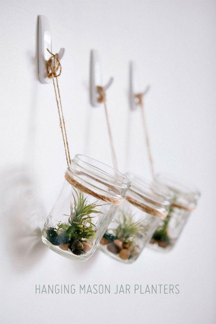 Sukkulenten In Korkstopsel Anlegen Eine Tolle Deko Idee , Luftpflanzen Tillandsien Im Glas Einfach Ein Paar Steine Und