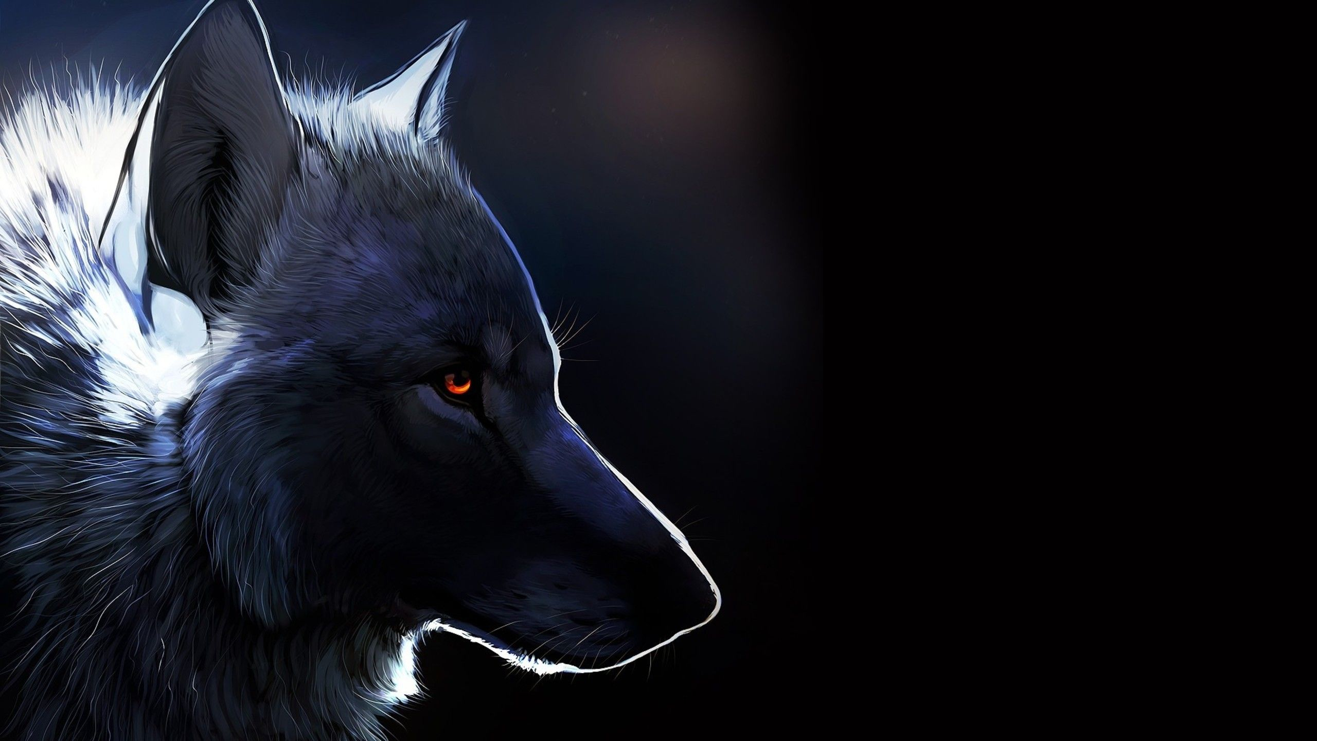 Wallpaper Download 2560x1440 Black Wolf Drawing Dark Creative Wallpaper Wild Animals Wallpapers Animals Wallpapers Wolf Wallpaper Wolf Art Animal Wallpaper