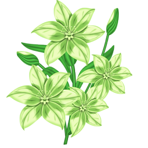 FLC_Light Green-Lilly.png
