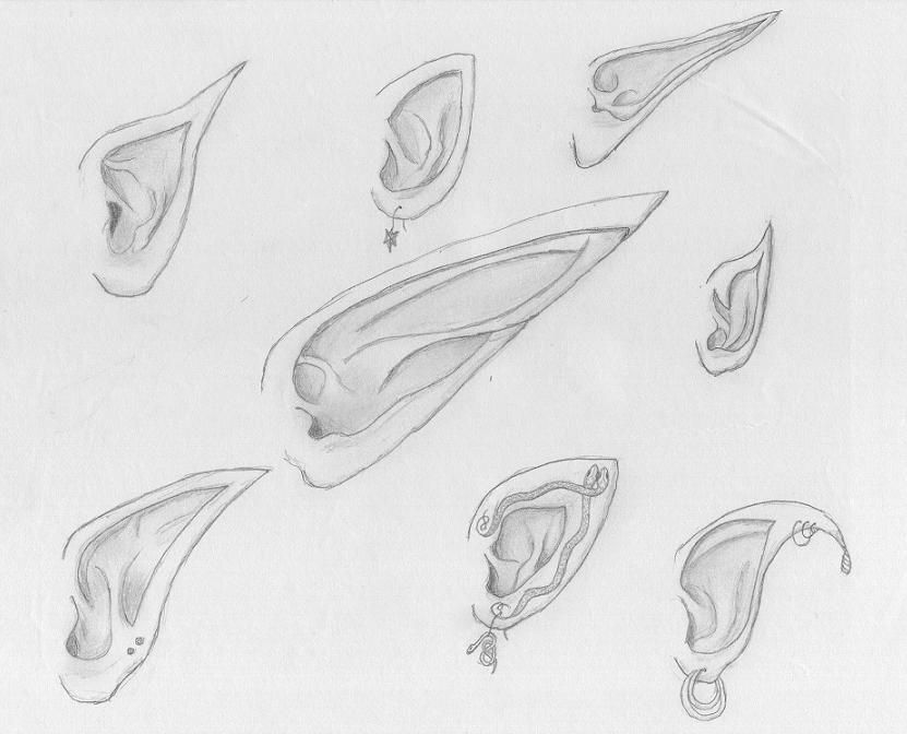 Elf Ears Galore How To Draw Eight Different Types Of Elf Ears Elf Drawings Fantasy Drawings Drawings