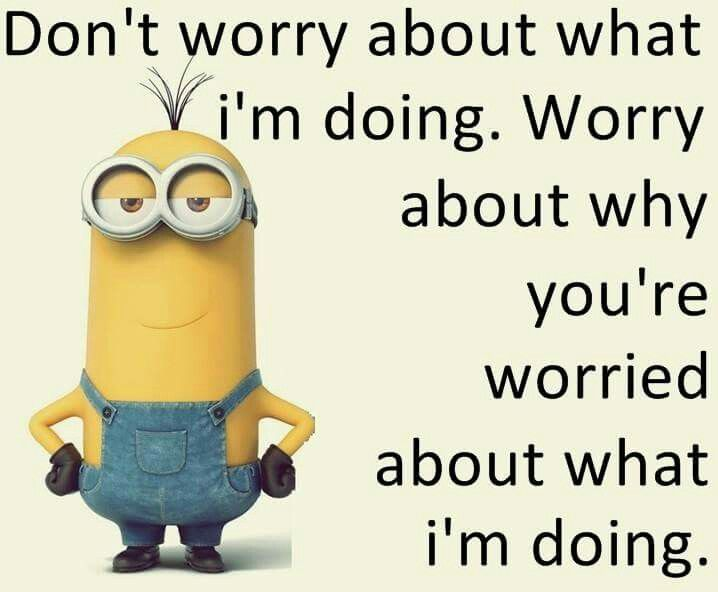 Don T Worry Funny Minion Quotes Sarcastic Quotes Funny Funny Minion Memes