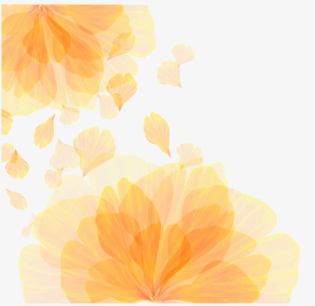 Vector Orange Flower Pattern Texture Vector Pattern Vector Texture Vector Flowers Png Transparent Clipart Image And Psd File For Free Download Watercolour Texture Background Flower Background Wallpaper Vector Flowers