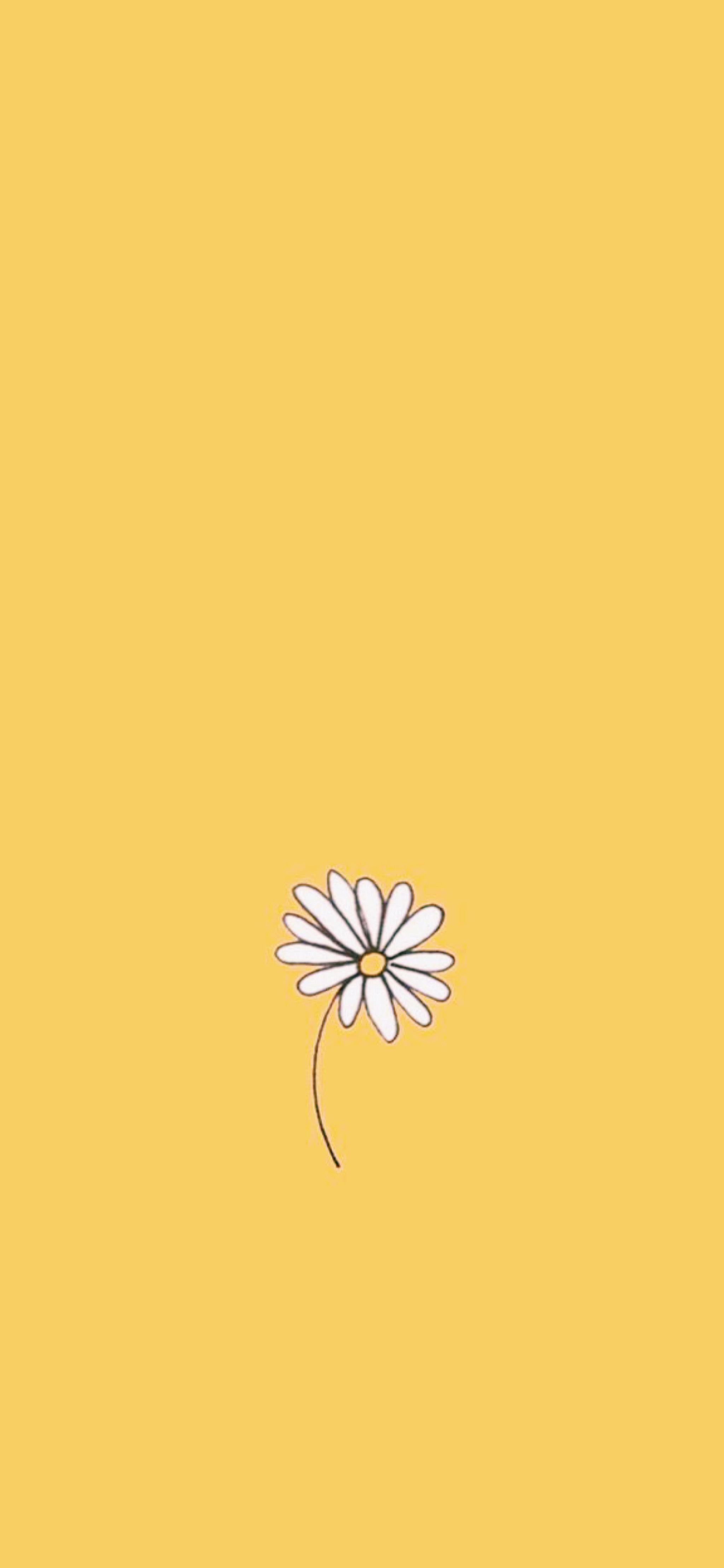 Pastel Yellow Wallpaper Iphone Wallpaper Yellow Yellow Aesthetic Pastel Yellow Wallpaper Cute yellow wallpaper images