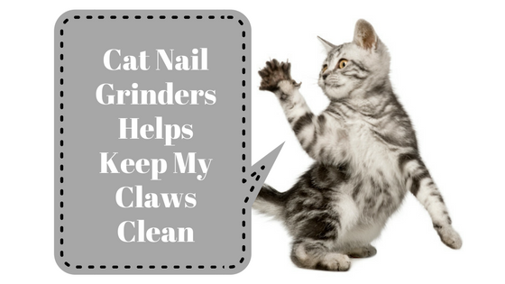 Best Cat Nail Grinder Review (It's Safe and Easy To USE
