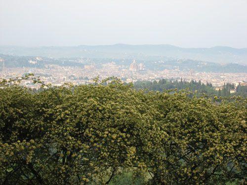 view from Pensione Bencistà - Fiesole (Firenze)