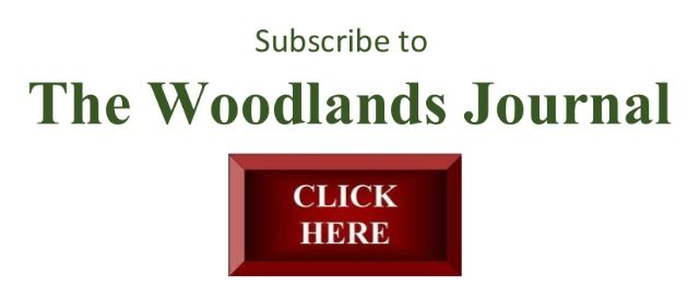Subscribe to TheWoodlandsJournal.com for  up to date news and events happening in The Woodlands, Texas and surrounding areas, featuring stories about community, local businesses, restaurants, night life, artists, events, and more.