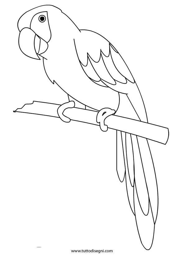 Картинка попугая трафарет