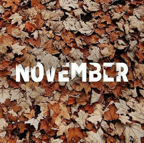 Leaf Covering November november hello november welcome november hello november quotes november images november pics #hellonovembermonth Leaf Covering November november hello november welcome november hello november quotes november images november pics #welcomenovember Leaf Covering November november hello november welcome november hello november quotes november images november pics #hellonovembermonth Leaf Covering November november hello november welcome november hello november quotes november