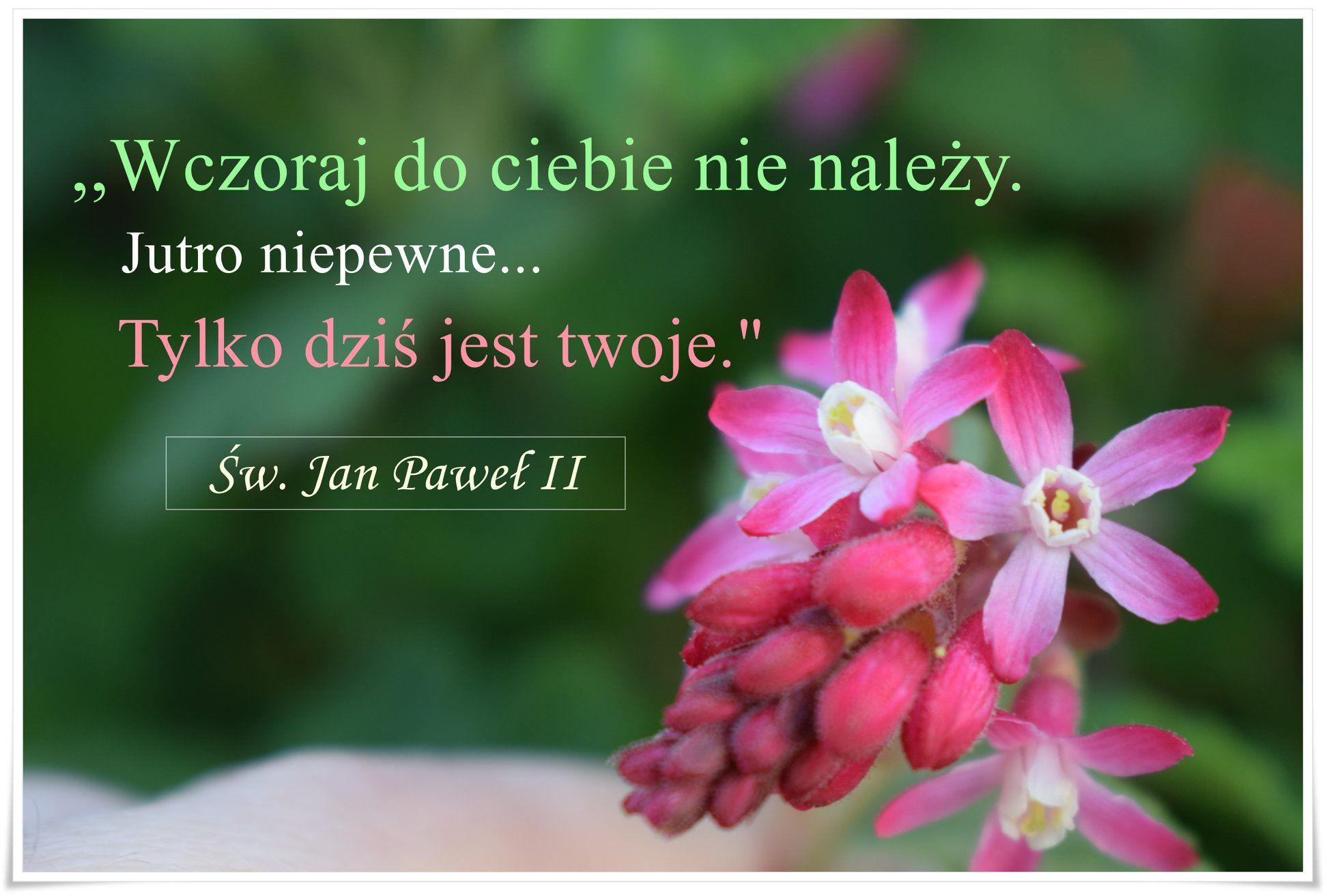 Pin Na Swiety Jan Pawel Ii